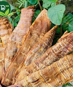 mang-nua-tep-farm24h-